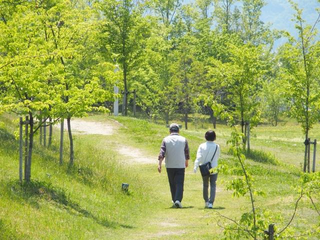 夫婦で散歩