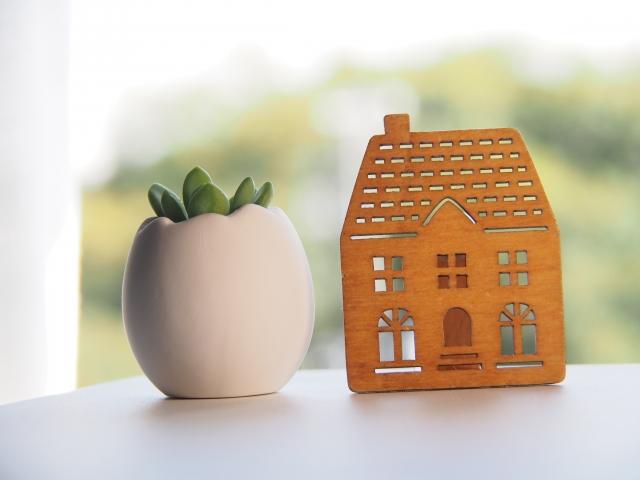 家とサボテン